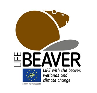 LIFE BEAVER – LIFE with the beaver, wetlands and climate change LIFE19 GIE/SI/001111