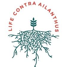 LIFE CONTRA Ailanthus – Uspostava kontrole invazivne strane vrste Ailanthus altissima (pajasen) u Hrvatskoj LIFE19 NAT/HR/001070