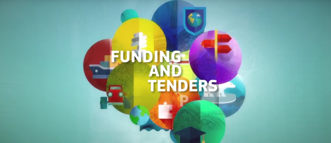 Funding & Tenders portal – frequently asked questions